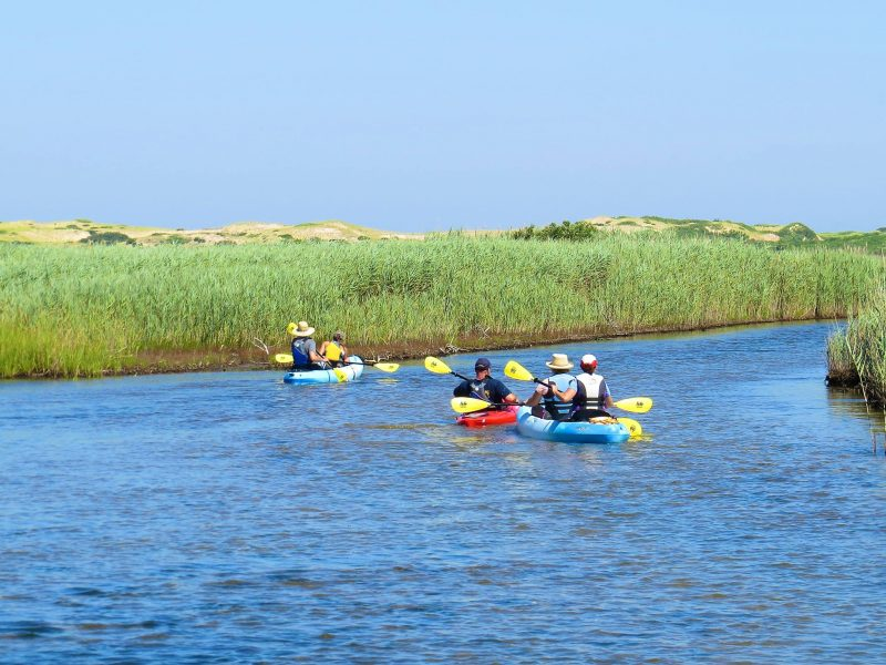 Top Family Activities on Cape Cod: 2021 Winners